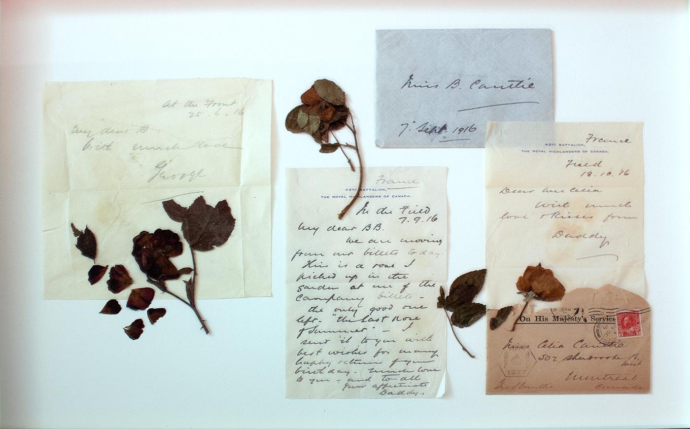 Amour familial - lettre | Fleurs d'Armes - Une exposition artisitique itinérante | www.fleursdarmes.ca