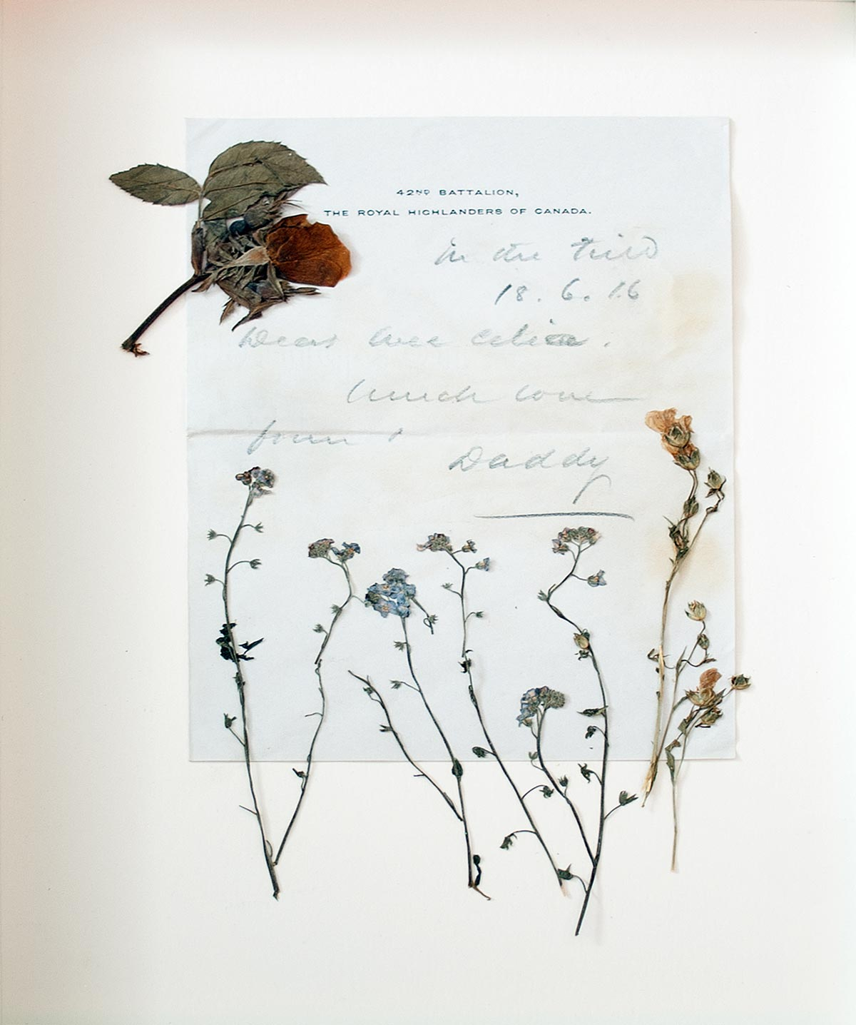 Memoire - lettre | Fleurs d'Armes - Une exposition artisitique itinérante | www.fleursdarmes.ca