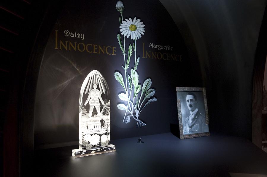 WAR Flowers / Fleurs d'ARMES
