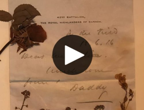 Fleurs d'armes, une exposition pour commémorer le centenaire de l'Armistice