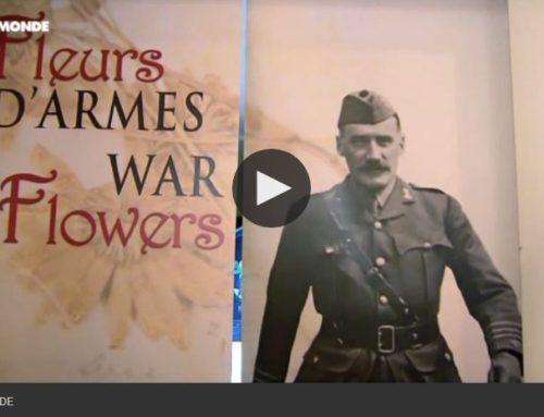 Centenaire de 14-18 : «Fleurs d'armes», une exposition émouvante pour commémorer la Grande Guerre